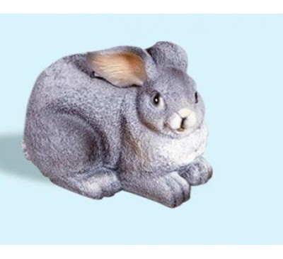 Кролик малый